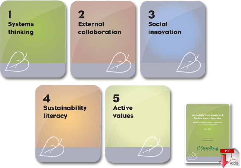 5 core competencies of sustainability leadership