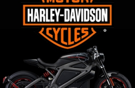 harley davidson supply chain management Harley davidson, the brand behind those loud v-twin motorcycles preferred by bikers, has built an electric motorcycle called livewire, the new electric motorcycle pairs harley davidson's classic sense of style with what promises to be an impressive array of modern (supply chain) technology.