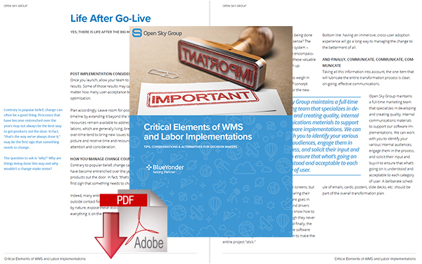 Download: Critical Elements of Warehouse Management Systems & Labor Implementations