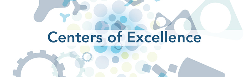 Supply Chain Centers Of Excellence Supply Chain 24 7