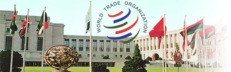 What The Wto Agreement Really Means For International