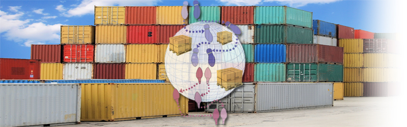 How Global Trade Management Solutions Address the Complexities of Importing & Exporting